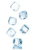 Cubo de hielo aislado Imagen de archivo