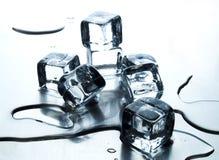 Cubo de hielo de fusión Imagen de archivo libre de regalías