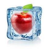 Cubo de hielo y manzana roja Foto de archivo libre de regalías