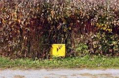 Cubo de la basura amarillo en parque Fotografía de archivo libre de regalías