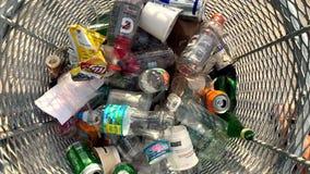 Cubo de la basura plástico de las botellas de agua almacen de video