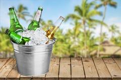 Cubo de la cerveza Imagen de archivo