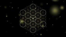Cubo de Metatrons e sólidos platônicos ilustração royalty free