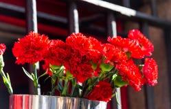 Cubo de rosas rojas fotos de archivo