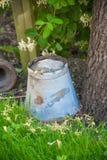 Cubo del metal del vintage debajo de un árbol Fotos de archivo