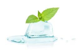 Cubo della menta del foglio e del ghiaccio Immagine Stock