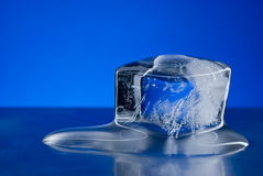 Cubo di ghiaccio Fotografia Stock Libera da Diritti