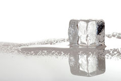 Cubo di ghiaccio di fusione Immagini Stock