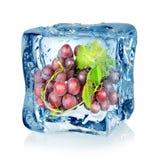 Cubo di ghiaccio ed uva blu Fotografia Stock Libera da Diritti