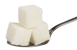 Cubo di zucchero bianco sul cucchiaio Fotografia Stock Libera da Diritti