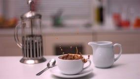 Cubo do açúcar que cai no café video estoque