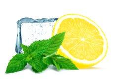 Cubo do limão e de gelo Fotografia de Stock