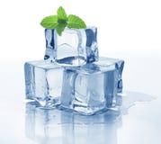 Cubo e hortelã de gelo Foto de Stock Royalty Free