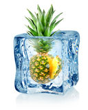Cubo ed ananas di ghiaccio Fotografia Stock