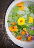 Cubo por completo de agua y de flores puras Fotos de archivo
