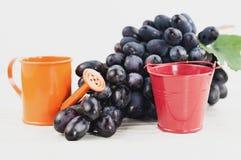 Cubo vacío rojo del metal y pote de riego anaranjado por otra parte del manojo de uvas azules maduras frescas en tablones blancos foto de archivo