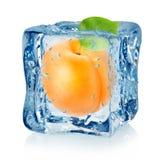 Cubo y albaricoque de hielo aislados Fotos de archivo libres de regalías