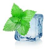 Cubo y menta de hielo imagen de archivo