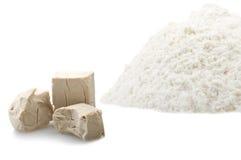 Cubos da farinha e do fermento Imagem de Stock Royalty Free