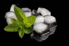 Cubos da hortelã e de gelo Foto de Stock