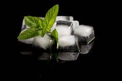 Cubos da hortelã e de gelo Imagem de Stock Royalty Free