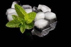 Cubos da hortelã e de gelo Imagem de Stock