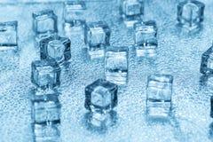 Cubos de gelo azuis transparentes de derretimento no vidro Imagem de Stock Royalty Free