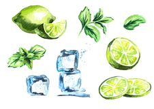 Cubos de gelo, cal e folhas de hortelã isoladas no grupo branco do fundo Ilustração tirada mão da aquarela ilustração do vetor