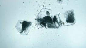 Cubos de gelo claros jogados no fim da água azul acima vídeos de arquivo