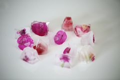 Cubos de gelo com alguns elementos fúcsia neles fotografia de stock