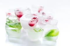 Cubos de gelo com bagas e fundo vermelhos do branco da hortelã Foto de Stock