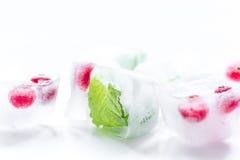 Cubos de gelo com bagas e fundo vermelhos do branco da hortelã Fotografia de Stock