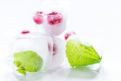 Cubos de gelo com bagas e fundo vermelhos do branco da hortelã Imagem de Stock Royalty Free