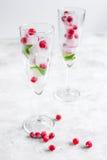 Cubos de gelo com bagas e a hortelã vermelhas nos vidros no fundo branco Fotos de Stock Royalty Free