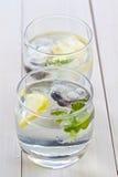 Cubos de gelo com fruta nos vidros do vertical da água Imagem de Stock Royalty Free