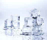 Cubos de gelo de derretimento Foto de Stock Royalty Free