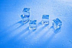Cubos de gelo molhados Fotografia de Stock Royalty Free