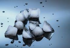 Cubos de gelo molhados no fundo lustroso preto Fotos de Stock