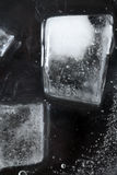 Cubos de gelo na obscuridade Foto de Stock Royalty Free
