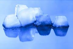 Cubos de gelo na superfície reflexiva azul Imagem de Stock Royalty Free