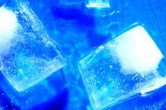 Cubos de gelo no azul Imagem de Stock