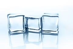 Cubos de gelo transparentes com reflexão isolados no branco Imagem de Stock Royalty Free