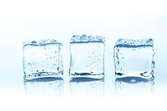 Cubos de gelo transparentes com reflexão isolados no branco Fotografia de Stock Royalty Free