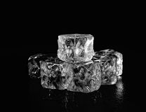 Cubos de gelo transparentes em um fundo preto Fotos de Stock Royalty Free