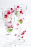Cubos de hielo con las bayas y la menta rojas en vidrios en el fondo blanco Foto de archivo libre de regalías