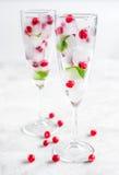 Cubos de hielo con las bayas y la menta rojas en vidrios en el fondo blanco Fotos de archivo