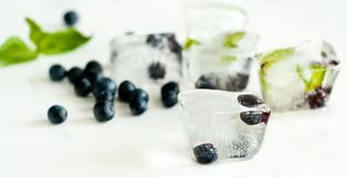 Cubos de hielo con los arándanos y la menta foto de archivo libre de regalías