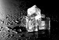 Cubos de hielo en la tabla mojada negra Foco selectivo Imagen de archivo