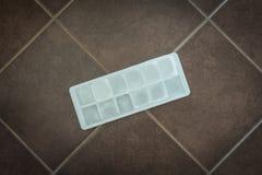 Cubos de hielo en molde del bloque Fotografía de archivo libre de regalías