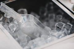 Cubos de hielo en una barra del c?ctel imágenes de archivo libres de regalías